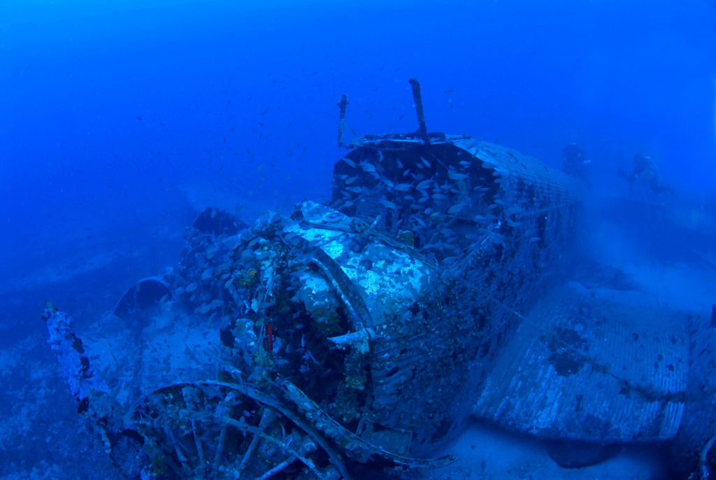 Sea Bottom Of The Sea Fish Seabed Sea: Junkers 52 Discovered In The Sea Bottom Of Kea Island
